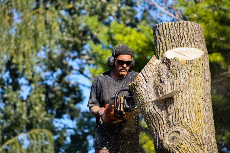 Treescape tree removal Charlotte NC