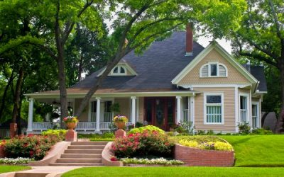 Tree Care & Prep Before You Sell Your Home