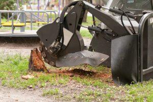 grinding a yard stump in Matthews, NC